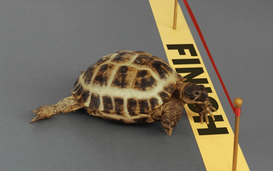 Is your marketing making slow progress?