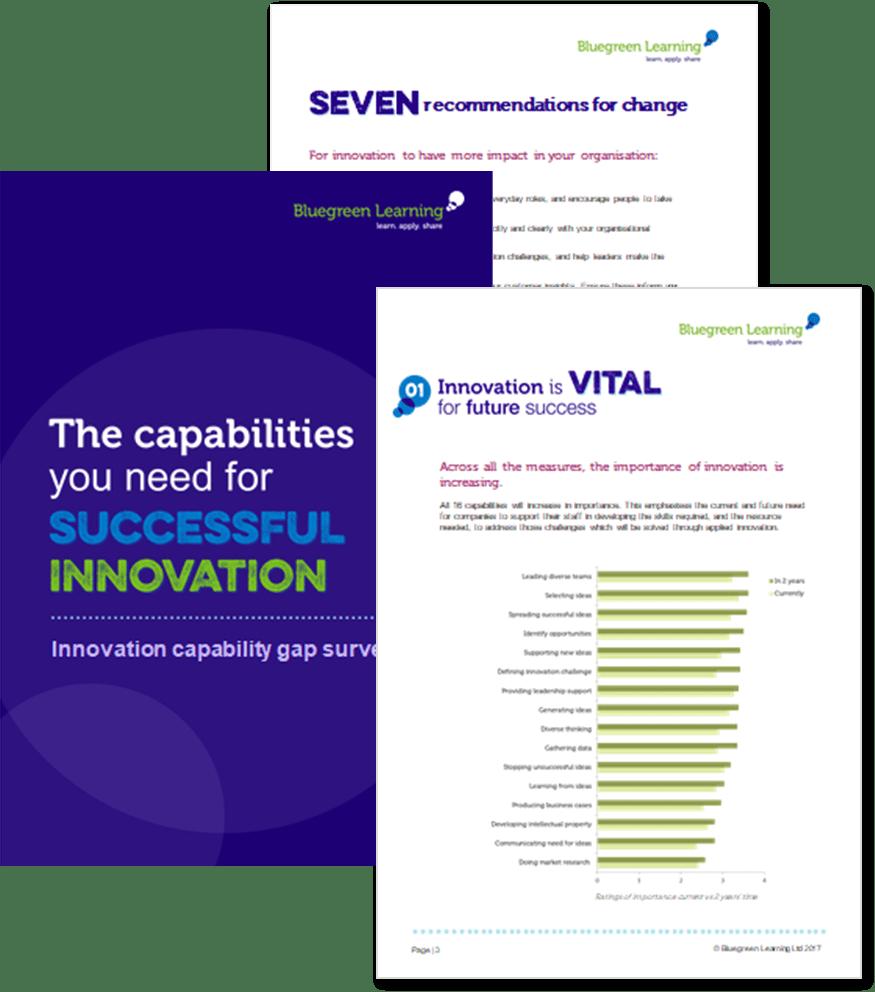 innovation capability report